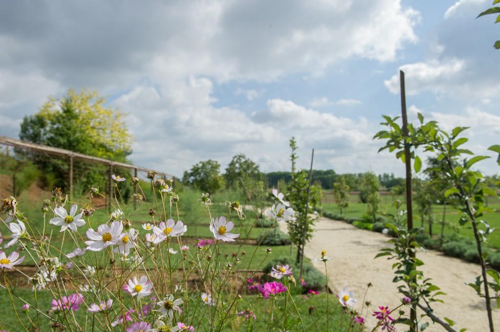Florario - Il Giardino (12)