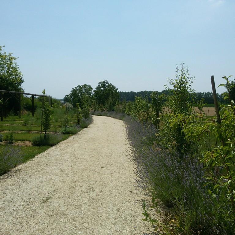 Florario - Il Giardino (33)