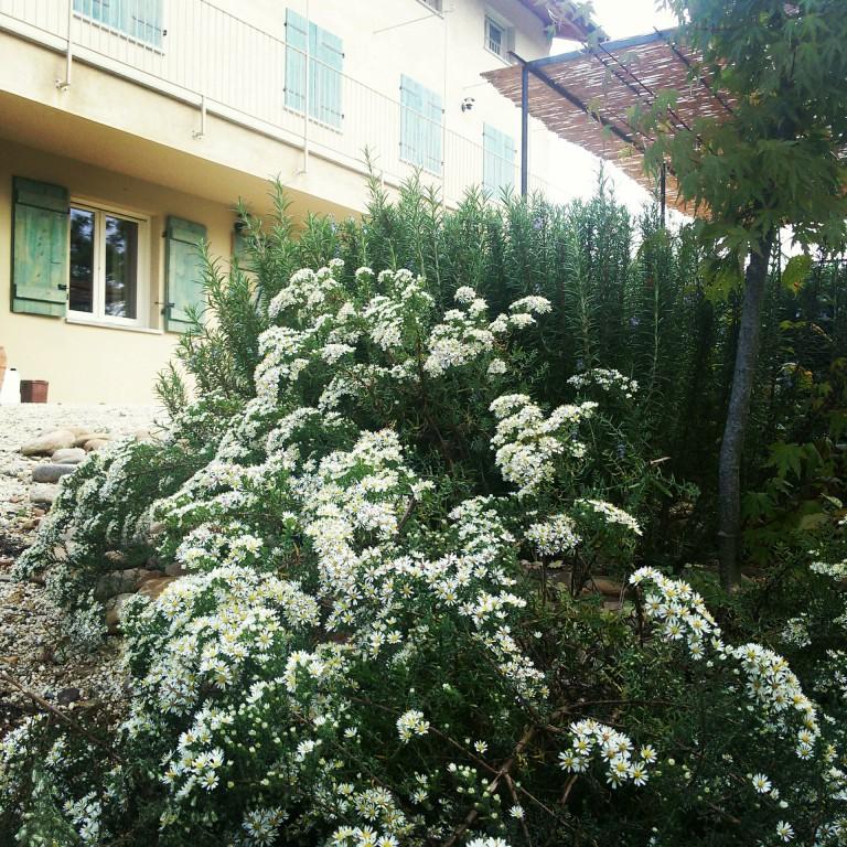 Florario - Il Giardino (39)