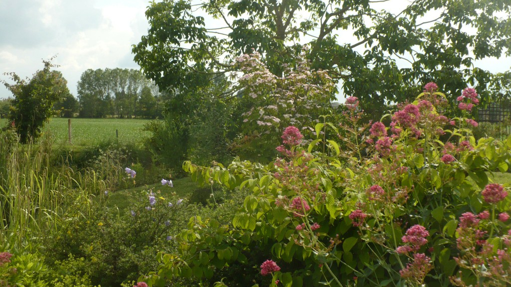 Florario - Il Giardino (65)