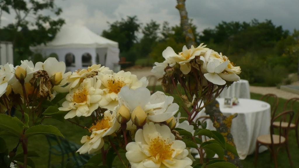 Florario - Il Giardino (72)
